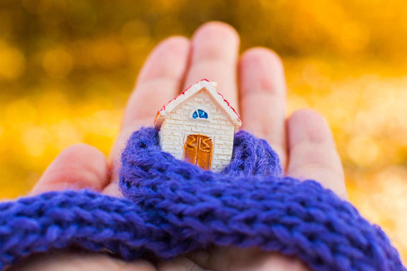 Le valvole termostatiche intelligenti tutto quello che for Valvole termostatiche netatmo